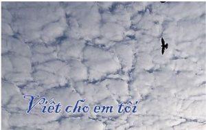 VietChoEmToi-web